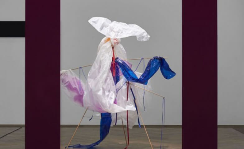 Bizarre Silks, Private Imaginings and Narrative Facts Kunsthalle Basel Tickets