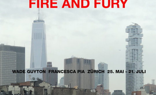 Wade Guyton, Fire and Fury Galerie Francesca Pia Tickets